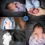 Collage Taylan